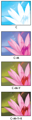 an illustration of the four-color printing process