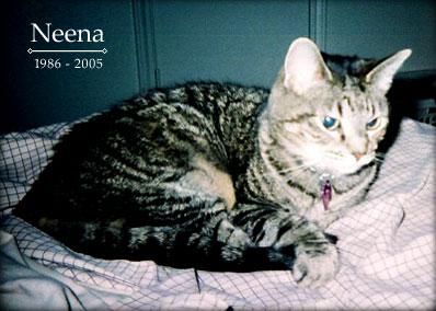 Neena, 1986 - 2005